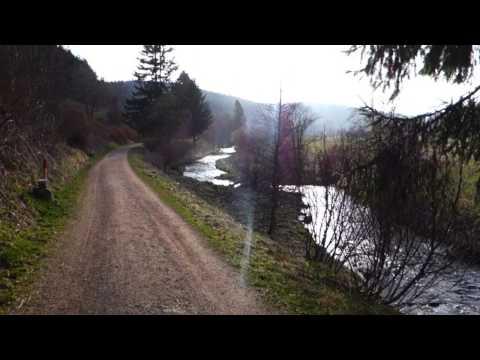 Bregtal (2/2) | Schwarzwald Natur Black Forest