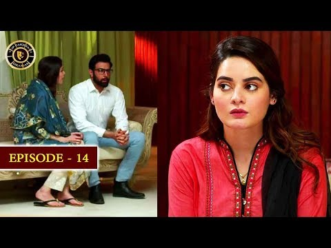 Hassad Episode 14   Minal Khan  Top Pakistani Drama