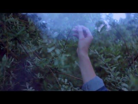 Memoryhouse - Soft Hate [FULL ALBUM STREAM]