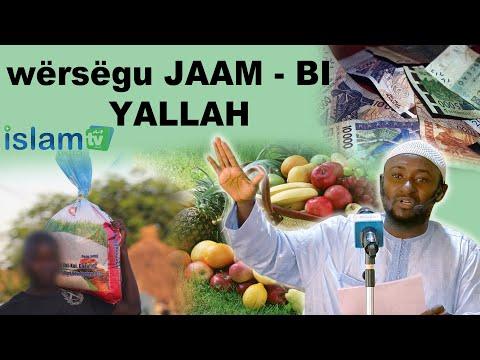 wërsëgu JAAM - BI  YALLAH  ( moom rek  mo yor sa wërsëg , boul saalite )
