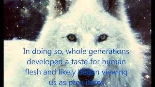 White Wolves With Blue Eyes A Story Of The Heart Break Of Hundreds Part 2