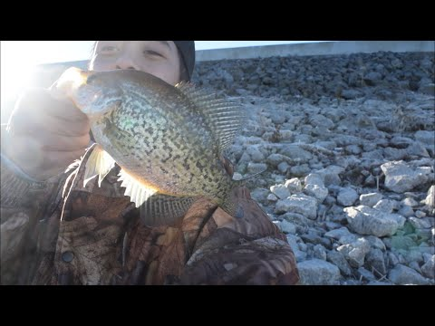 I CAUGHT A CRAPPIE WITH ONE HAND AT NEWTON RESERVOIR!
