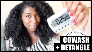 The 25 Minute Co Wash + Detangle! Thick Long Natural Hair - Naptural85