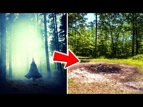 9 Mysterious Forests You Don't Want To Get Lost In