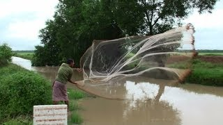 Net Fishing in Countryside Stream - Suong, Cambodia