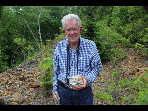 Global Reset, Precious Metals, Junior Miners & Junior Mining Companies - Bob Moriarty