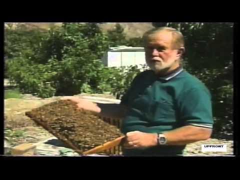 Bennett's Honey Farm by filmmaker Keith O'Derek
