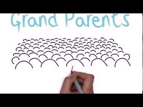 Grandparents Raising Grandchildren: The Facts