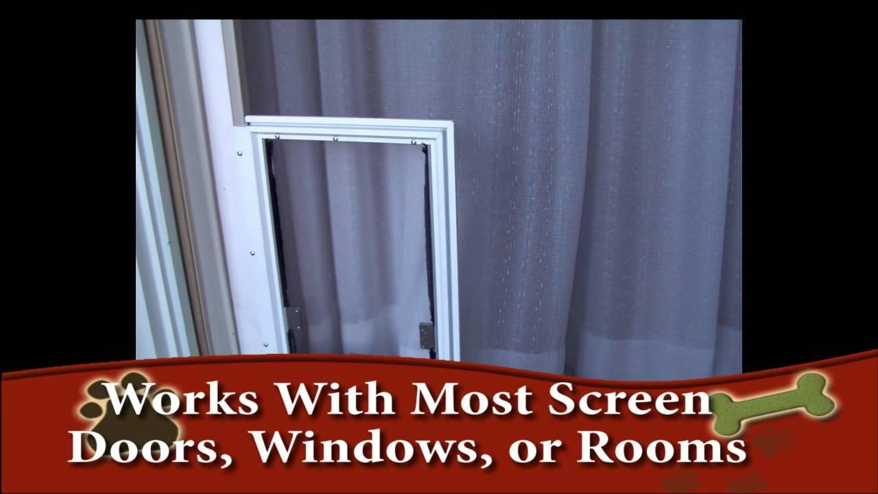 hale pet door screen dog door