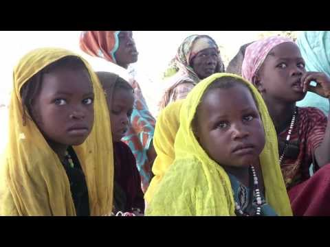 In Chad, vaccine takes a long journey to save a life