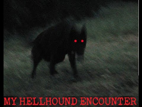 PERSONAL STORY: My Hellhound Encounter