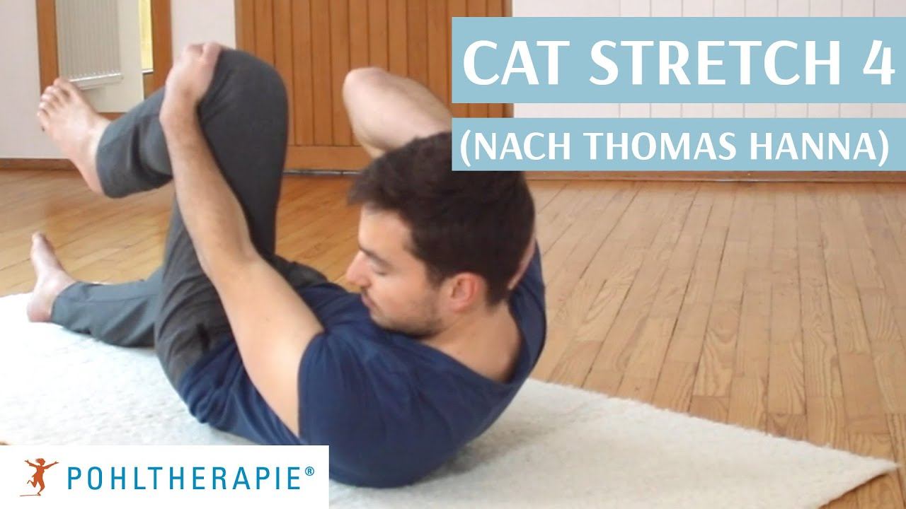 Cat Stretch 4 (nach Thomas Hanna)