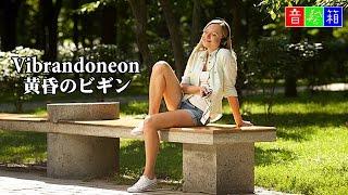 Nokky Vibrandoneon|黄昏のビギン -特別養護老人ホームの慰問LIVEです-...