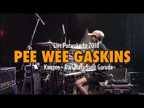 Pee Wee Gaskins - Kangen + Dmsg (Drum Cam)