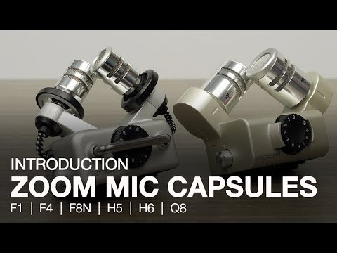 Zoom Mic Capsule Overview