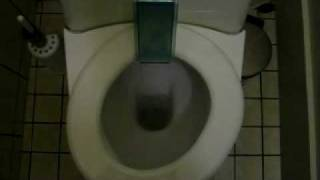 The German Self-Squeegee-ing Toilet