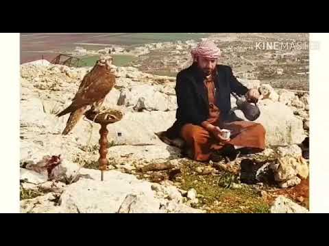 صدام ابو عدي مرحوم قبيلة الموالي