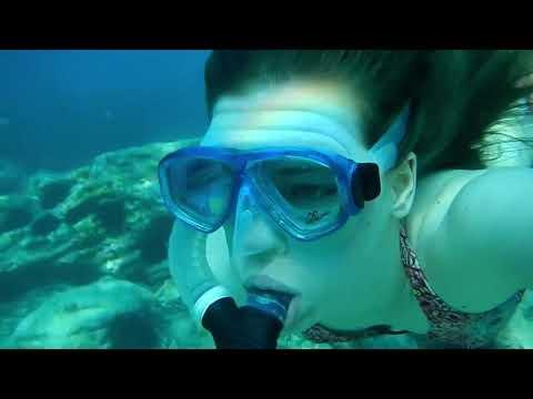 Snorkeling gear rental - Snorkeling Jervis Bay