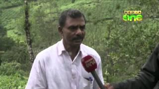 Heavy Rains Spell Trouble for tea farmers