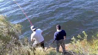Pesca de carpas en dique los molinos!