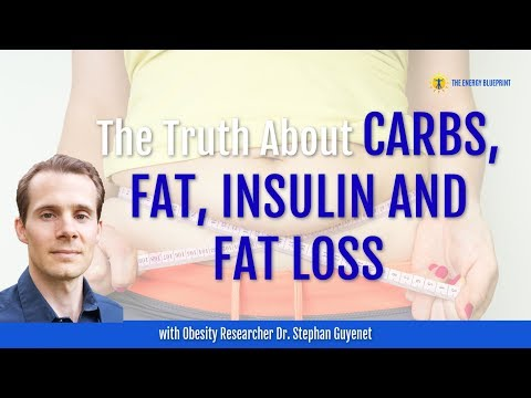 the-truth-about-carbs,-fat,-insulin-&-fat-loss-w/-obesity-researcher-dr.-stephan-guyenet