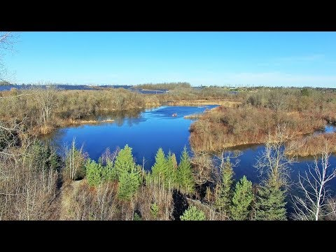 Beachville Tract & Conservation Area