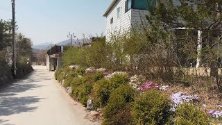 korea walking. 양평 문호리 단독 전원주택 …