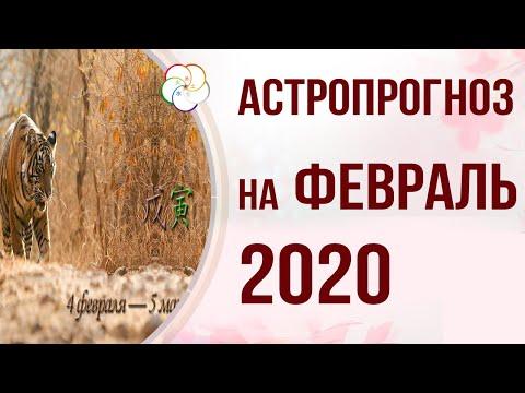 БАЦЗЫ 2020: АСТРОПРОГНОЗ на Февраль 2020 года. Месяц Земляного Тигра 戊寅4 февраля — 5 марта