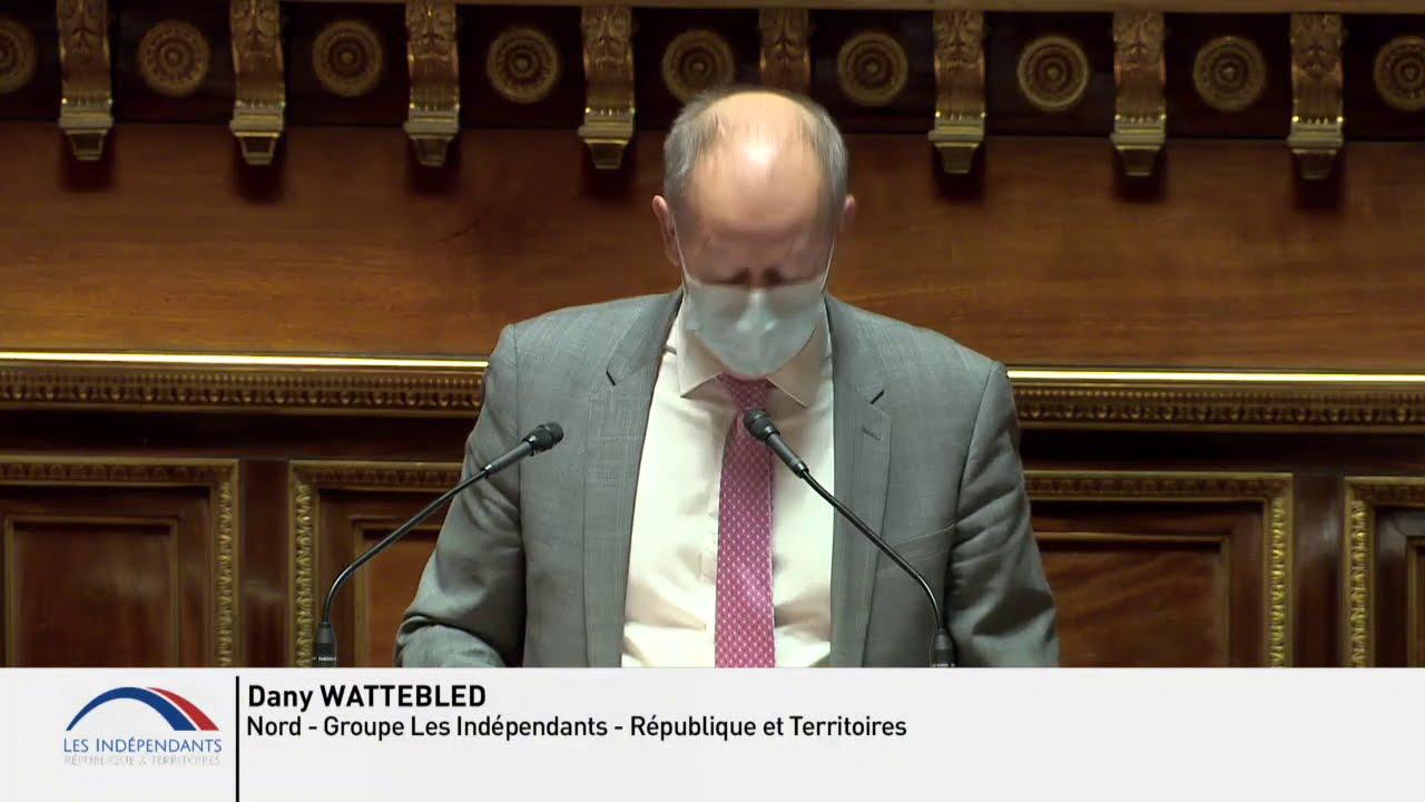 Dany WATTEBLED : PJL Organique Élection du Président de la République