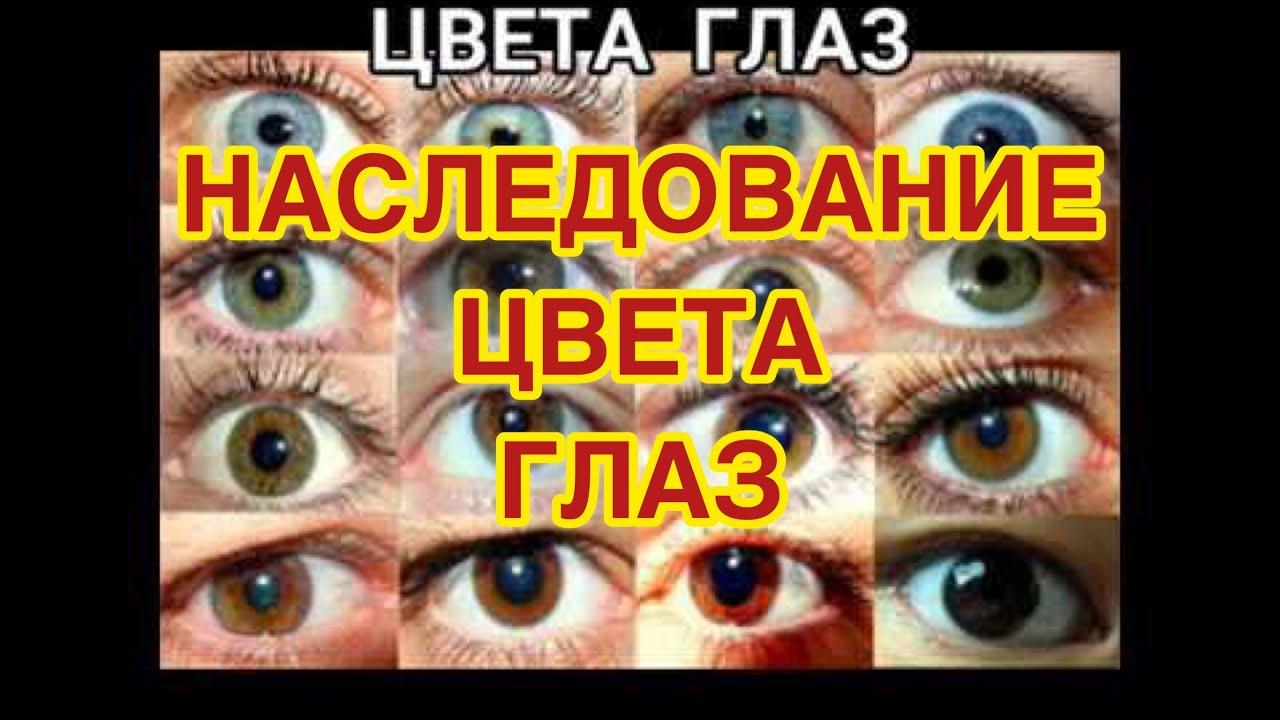Наследование цвета глаз. Какой цвет глаз будет у вашего будущего ребенка?
