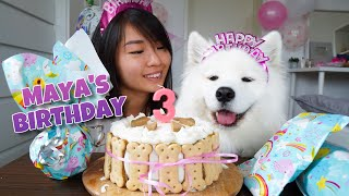 my-dog-s-exciting-third-birthday-with-diy-dog-birthday-cake-recipe