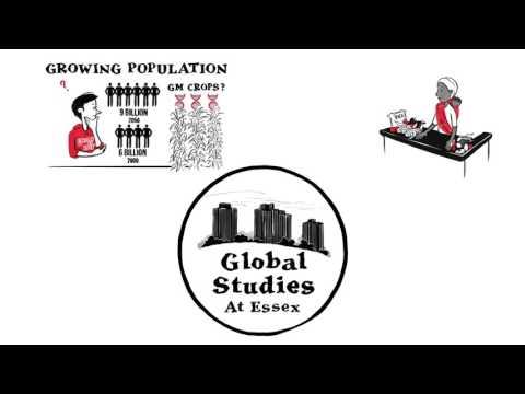 Why Global Studies?