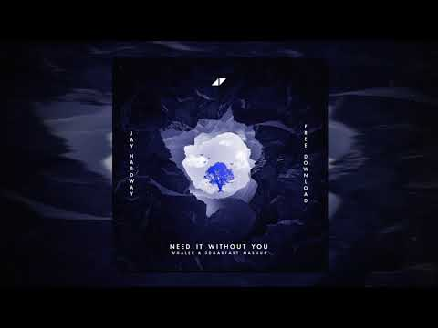 Need It Without You (3dgarfast & Whaler Mashup) - Avicii vs. Jay Hardway