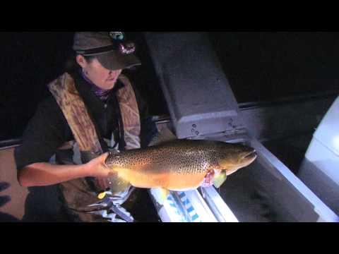 Understanding Arkansas's Tailwater Trout Fisheries