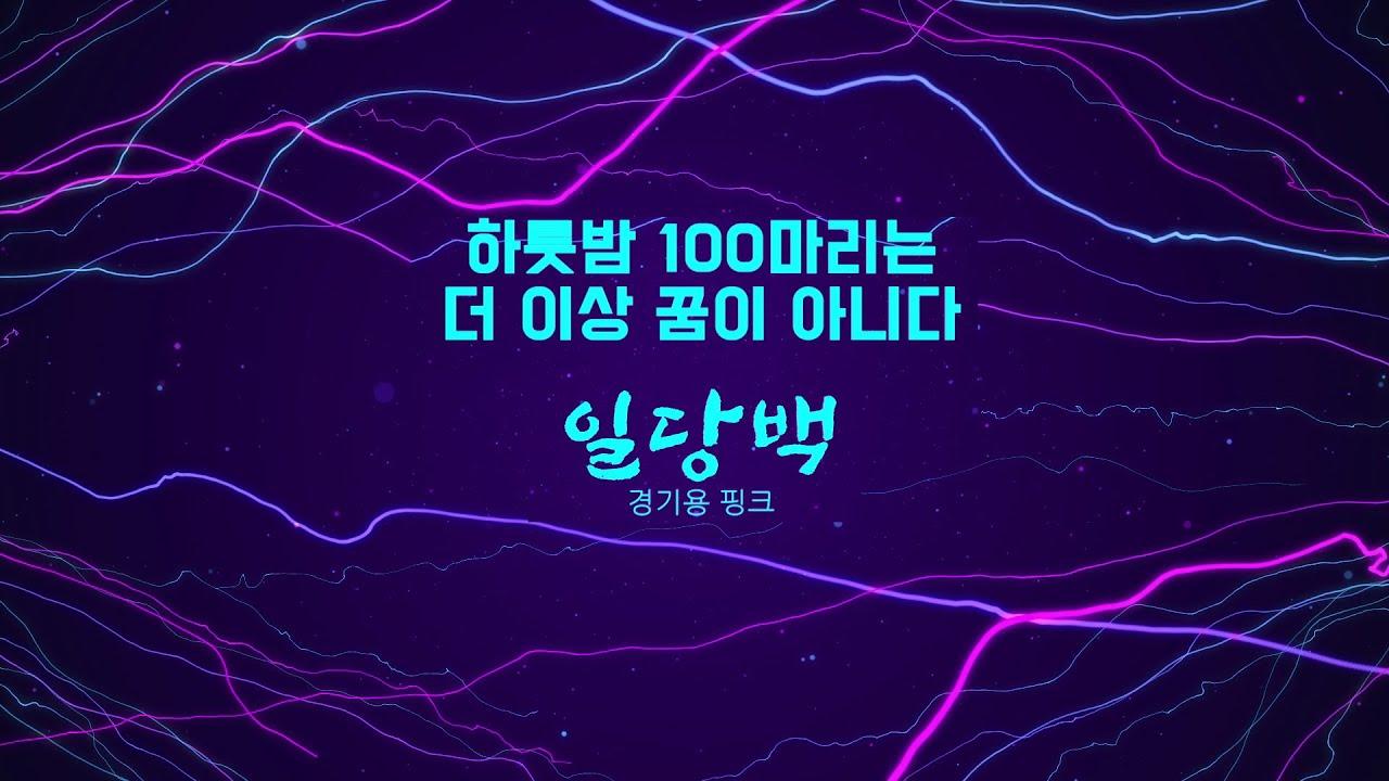 [양어장] 42.신제품 올림찌 소개 - 경기용 핑크 일당백