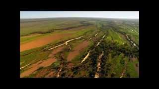 Родина волнистых попугаев   Австралия(Жизнь волнистых попугаев на Родине в Австралии., 2013-01-31T20:02:24.000Z)