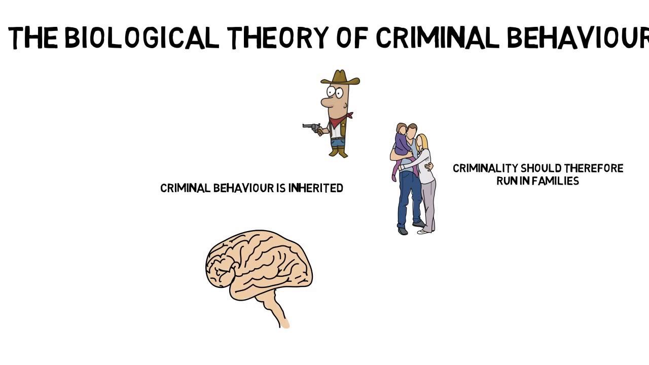 biological theory of criminal behaviour