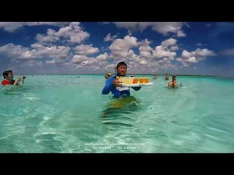 Cozumel El Cielo Sand Bar Snorkeling Cruise Holidays | Luxury Travel Boutique