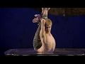 cirque du soleil luzia(8)