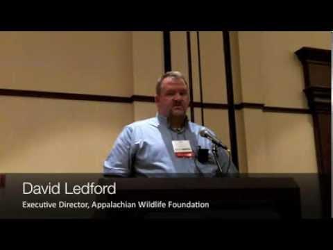 2013 NBTC David Ledford, Appalachian Wildlife Foundation