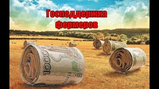 Господдержка фермеров. Пермский край. Животноводческие фермы.