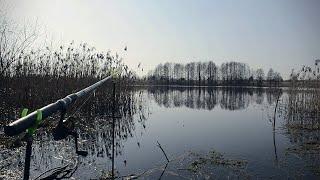 Открытие рыболовного сезона Ловля на фидер Рыбалка