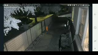 SLC car thief