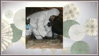 ASL- Asbestos Services Edinburgh Call Now For Appointment +44 131 664 2107