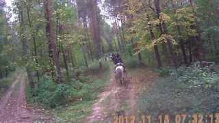 Rajd do Klepaczy.Postój.Galop w lesie.