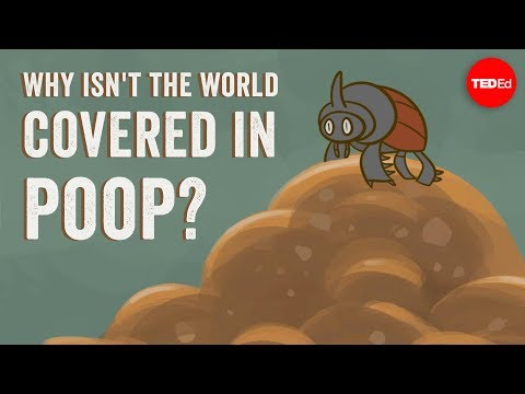Why isn't the world covered in poop? - Eleanor Slade and Paul Manning