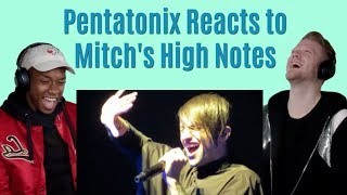 Mitch Grassi vocal range Reaction