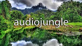 Hip-Hop Party - Audio Jungle - No Copyright Sounds (#AJ)