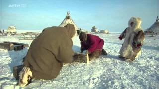 Sibirya tundralarında yaşam (ARTE  360°  belgeseli)