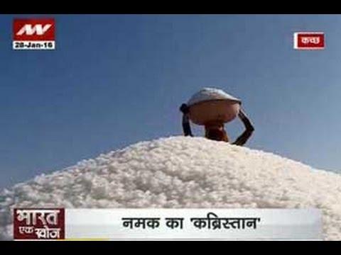 Bharat Ek Khoj: The 'tasteless' life of salt workers